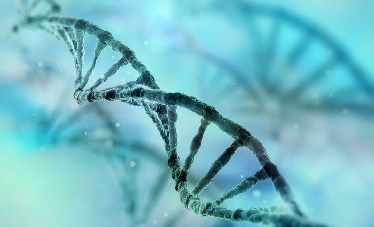 Diagnosi genetica preimpianto