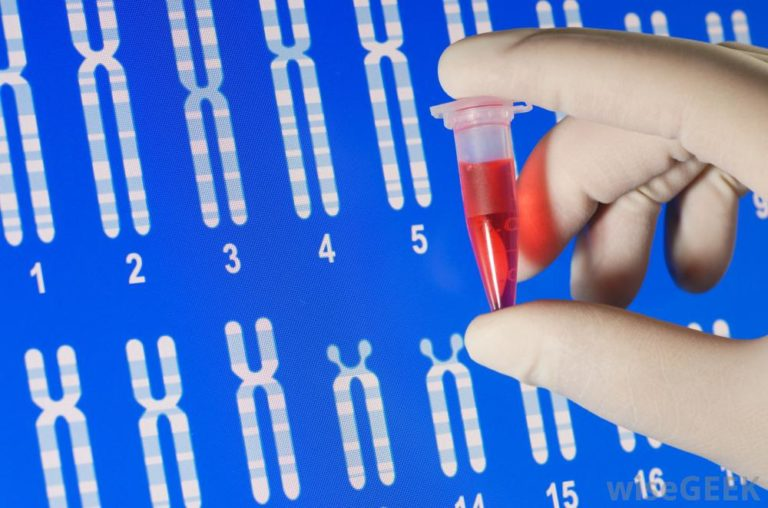 Test de citogenética. Cariotipo, QF-FCR, Arrays, FISH