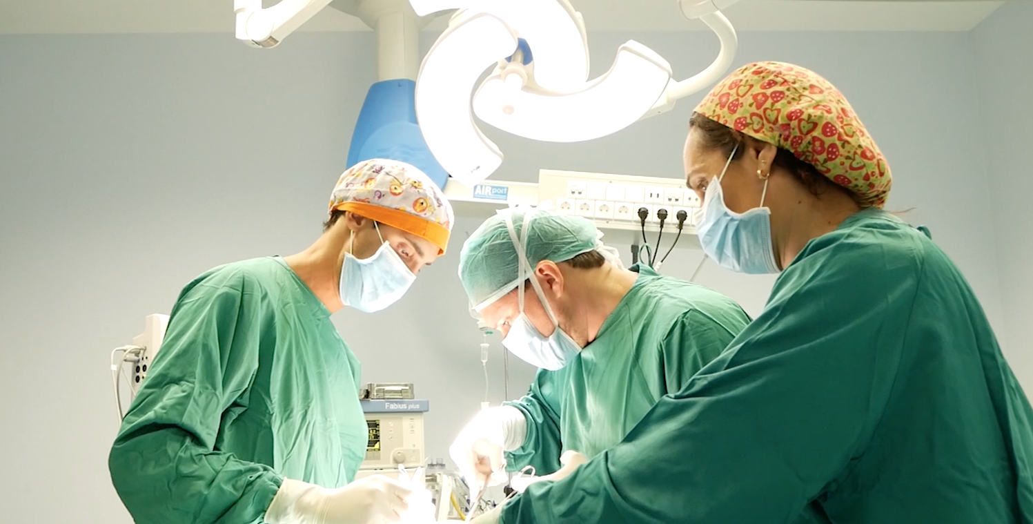 cirugia _reparadora_fertilidad